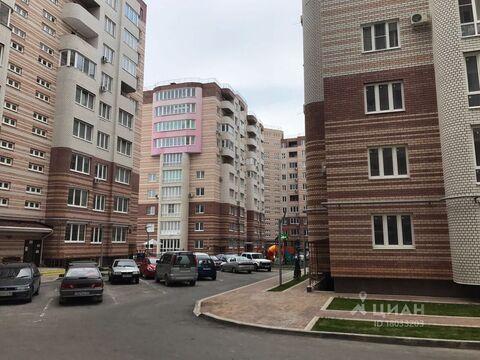 Аренда квартиры, Анапа, Анапский район, Ул. Крылова - Фото 1