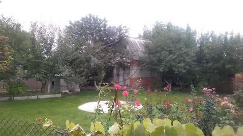 Продажа дачи, Шопино, Яковлевский район, Северная 2 - Фото 2