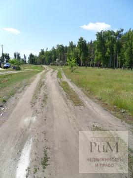 Продам участок в Александровке - Фото 3