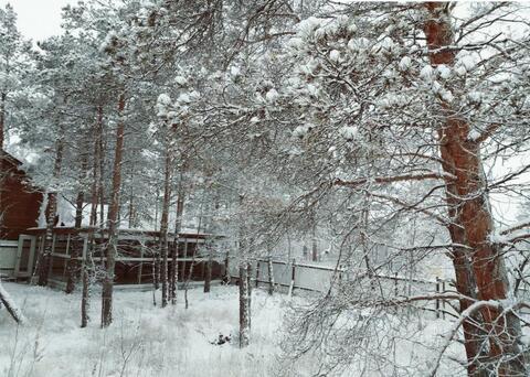 Продажа участка, Якутск, 13 км - Фото 2