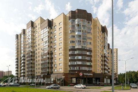 Продается студия, г. Ногинск, Дмитрия Михайлова - Фото 2