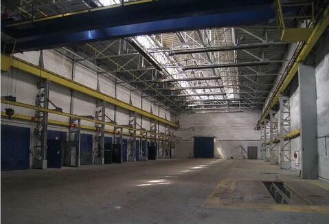 Продам производственно-складскую базу 8666 кв. м - Фото 4