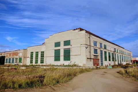 Производственно-складское здание 20 000 кв.м. - Фото 4