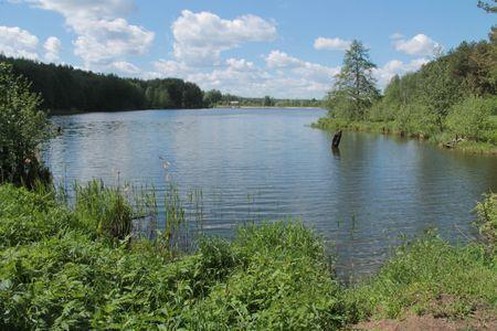 Земельный участок около Вяткино 10 соток 5 км от Владимира - Фото 2