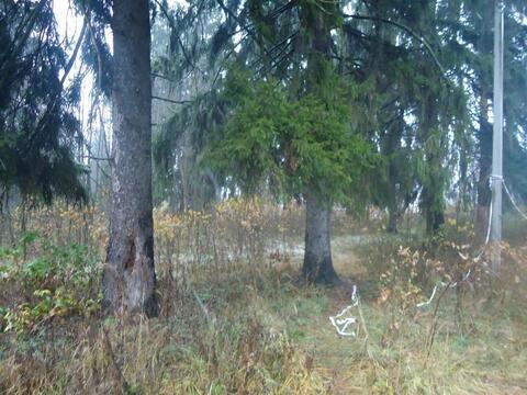 Участок 12 сот. , Можайское ш, 63 км. от МКАД. Тучково - Фото 5