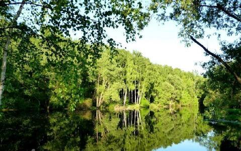 Шикарный участок У леса всего В 9 км от МКАД - Фото 1