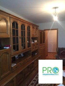 Пропект славы 47, четырехкомнатная в кирпичном доме, ремонт - Фото 4