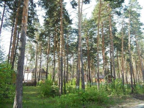 Продажа участка, Приобский, Новосибирский район, Пер.Рублевский - Фото 5