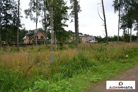 Продажа участка, Зеленая Роща, Выборгский район, - Фото 5