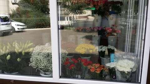 Продажа готового бизнеса, Воронеж, Ул. Карпинского - Фото 4