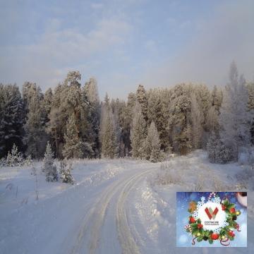 Лесной участок 16 соток , забор с трех сторон в обжитом СНТ - Фото 5