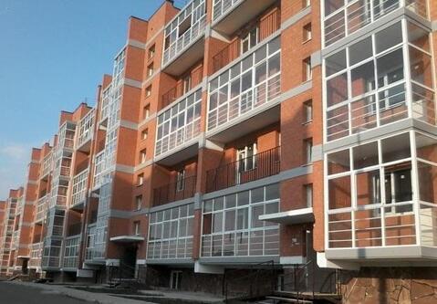Квартира 44 кв.м. Березовый (Академгородок)
