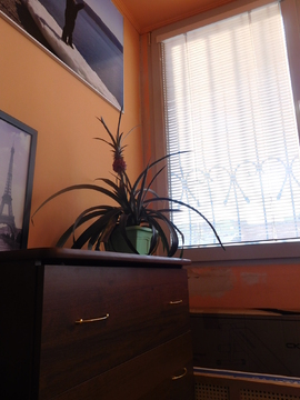 Уютная 3-х комнатная квартира (Инорс). Дом 2004 ода постройки. - Фото 5
