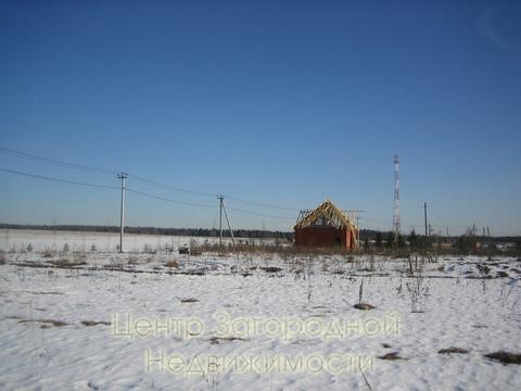 Участок, Ярославское ш, 49 км от МКАД, Михайловское д. (Пушкинский . - Фото 5