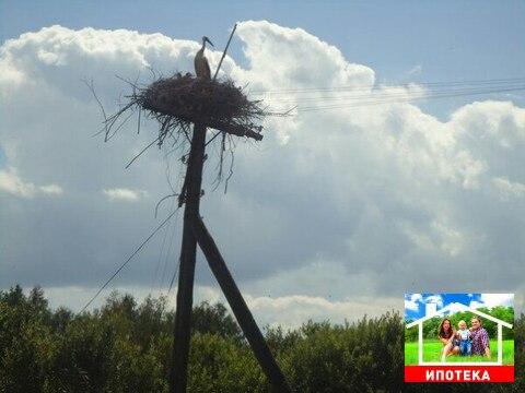 Участок в Новгородской области - Фото 3
