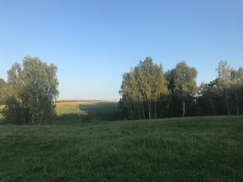 Участок 30 соток, ИЖС, в окружении леса, Д. Поспелиха, Чехов - Фото 3