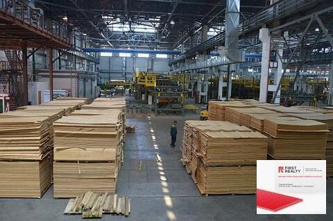 Завод по обработеке пиломатериалов и изготовлению домов - Фото 1