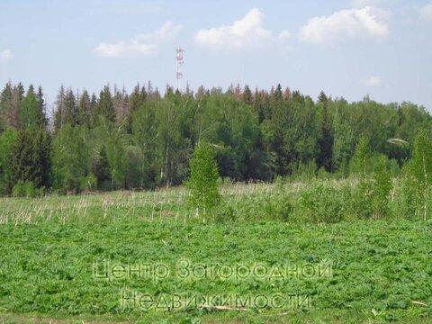 Участок, Новорижское ш, 98 км от МКАД, Нововолково д. (Рузский р-н). . - Фото 1