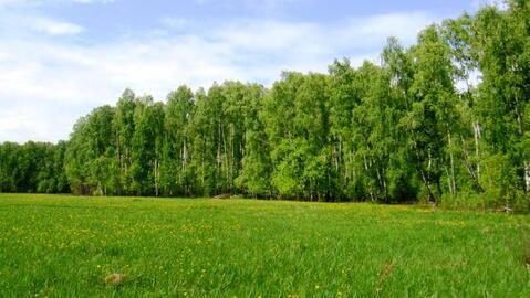 Продажа участка, Лесной, Первомайский район - Фото 2