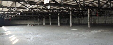 Сдается склад в д. Загорново. Площадь 3250м2 - Фото 1