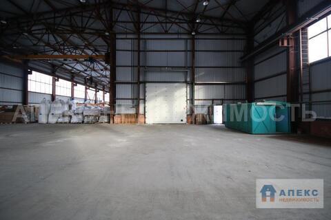 Аренда помещения пл. 550 м2 под склад, Щелково Щелковское шоссе в . - Фото 5