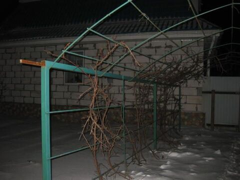 Продается 7-к Дом ул. Центральная - Фото 3