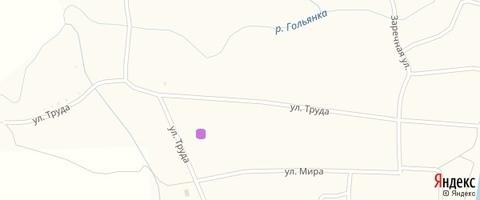 Продам земельный участок 12 соток ИЖС, село Гольяны, улица Труда - Фото 2