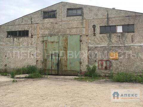 Аренда помещения пл. 1000 м2 под склад, производство Чехов . - Фото 3
