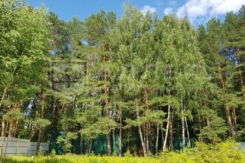 Лесной участок 20 сот. - Фото 2
