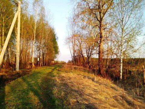 Участок 15 соток в деревне на берегу Можайского водохранилища (ПМЖ). - Фото 4
