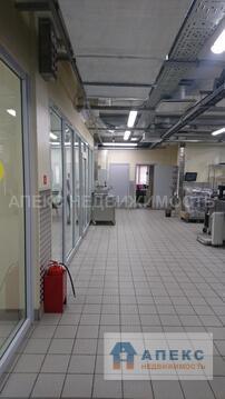 Аренда помещения пл. 250 м2 под производство, пищевое производство м. . - Фото 3