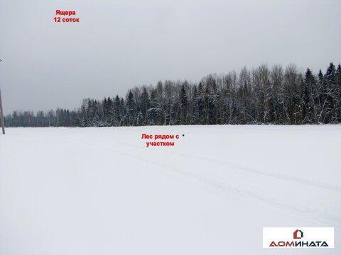 Продам участок 12 соток д.Ящера Лен. область 80 км от Санкт-Петербурга - Фото 5