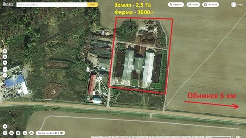 Сдам ферму в аренду Киевское шоссе, 90км, д.Тимашово - Фото 1