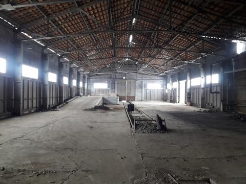 Продажа земельных участков в индустриальном парке - Фото 3