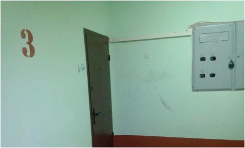 Трехкомнатная квартира 67 кв.м. рп Правдинский ул. Герцена дом 1 - Фото 5