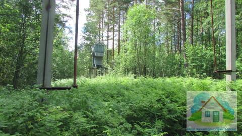 Продается земельный участок 25 сот в пос. Снетково вблизи 2-х озер - Фото 2