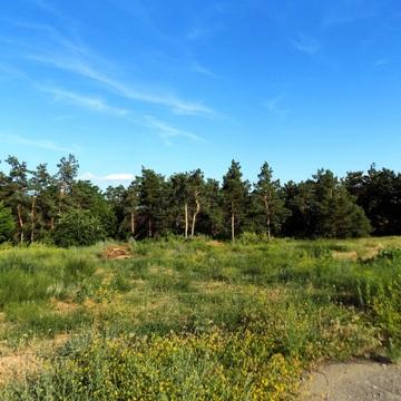 Земельный участок 28 сот в закрытом поселке Латошинка - Фото 2