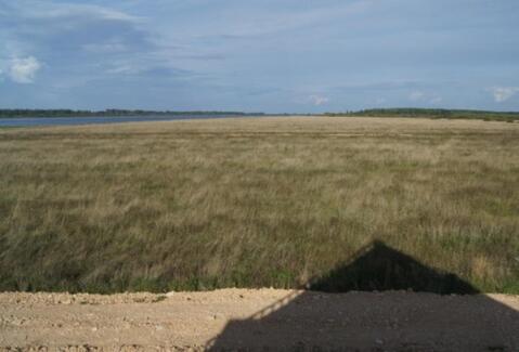 Земельный участок. Шимский район, д. Усполонь - Фото 1