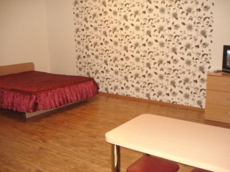 1к. квартира в Новосибирске ул.Кошурникова посуточно - Фото 5