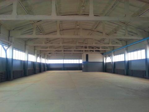 Продам производственно-складской комплекс 6545 кв.м. - Фото 2