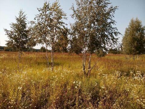 Рос7 1815231 д. Периково, участок 5,1 га. Ясногорский р-н, Тульская об - Фото 4