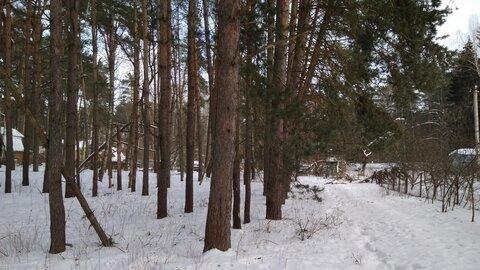 1/2 дома на небольшом клочке земли в окружении столетних сосен, в крас - Фото 4
