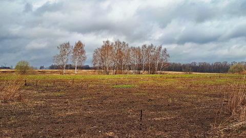 1га для ЛПХ, окраина деревни Ненашево, граничит с оврагом и прудиком - Фото 3