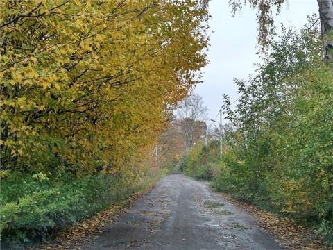 Участок в районе ул. Катина, город Калининград - Фото 2