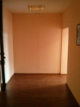 Продам универсальное помещение 244 кв.м. с отд. входом - Фото 2
