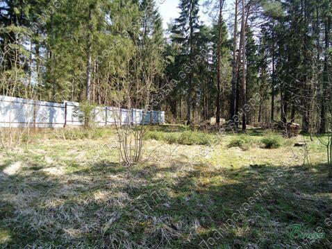 Новорижское ш. 34 км от МКАД, Клопово, Участок 20 сот. - Фото 5