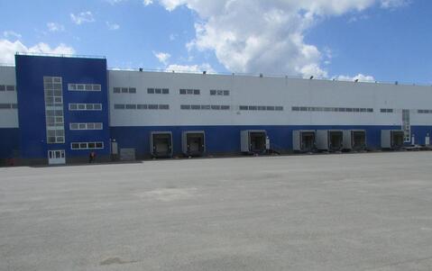 Сдам производство-складские площади 20 000 кв.м. - Фото 2