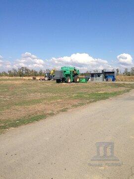 Предлагается на продажу склад в Ростовской области, с. Самарское - Фото 3