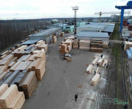Производственное предприятие по деревообработке. - Фото 4