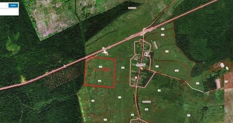 Массив для дачного строительства 21 га у д. Ратница - Фото 2